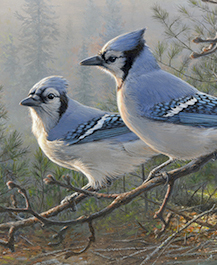 Blue Jays painting